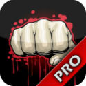MMA Fan Pro iPhone App: UFC Fighters, Models, Ring Girls, News